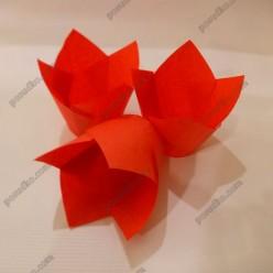 Тарталетка Форма паперова для випічки тюльпан червона d-50 мм, h-60, 80 мм (Україна)